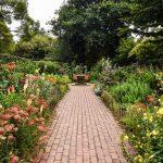 Allt för trädgården